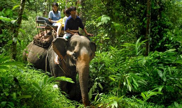 Adventure Chiang Mai – Fuld dag