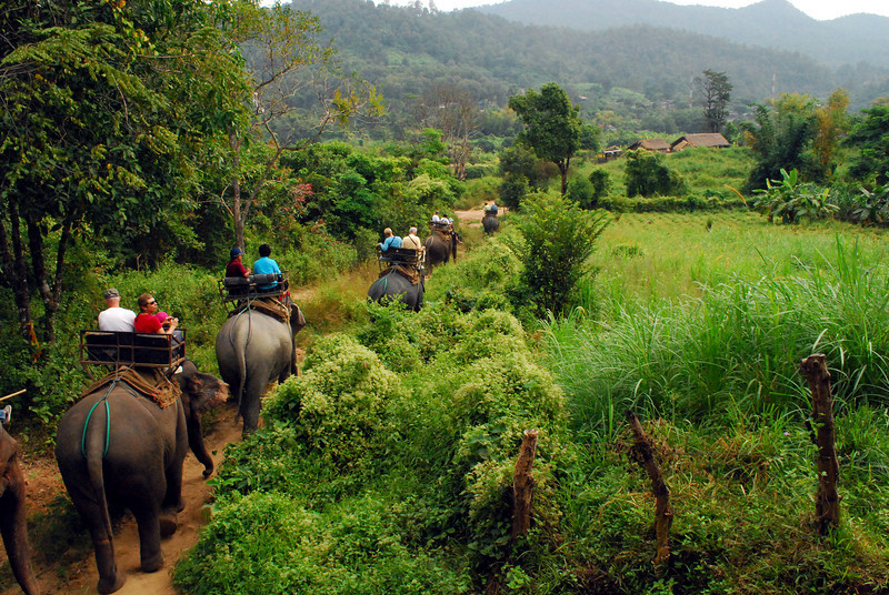 Trekking Mae Taeng – Fuld dag