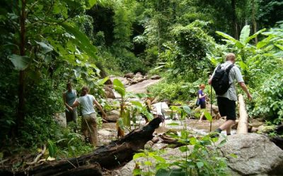 Mae Taeng Trekking – 2 dage
